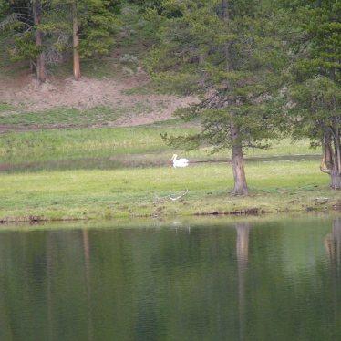 Photo taken at Yellowstone Lake by Kate Standish